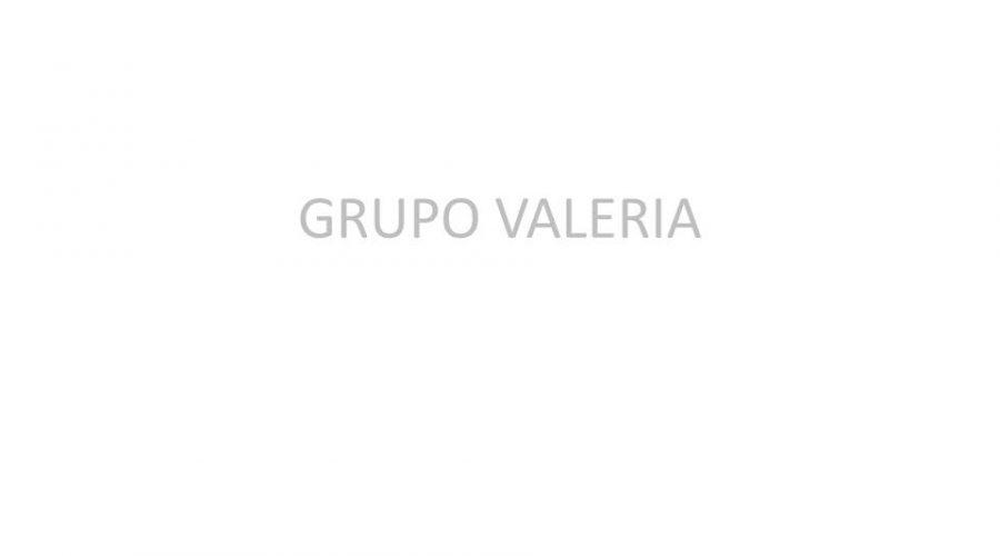 GRUPO VALERIA - FERRAZ 67 - PISOS EN VENTA